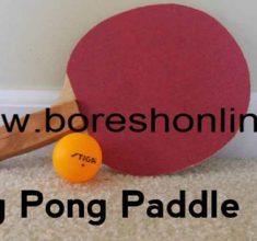daste ping pong
