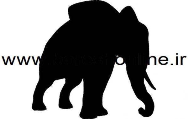 فایل کرل فیل