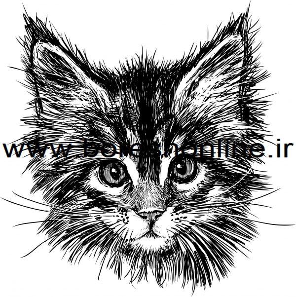فایل لیزری گربه