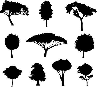 فایل کالکشن درخت