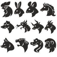 فایل کالکشن حیوانات